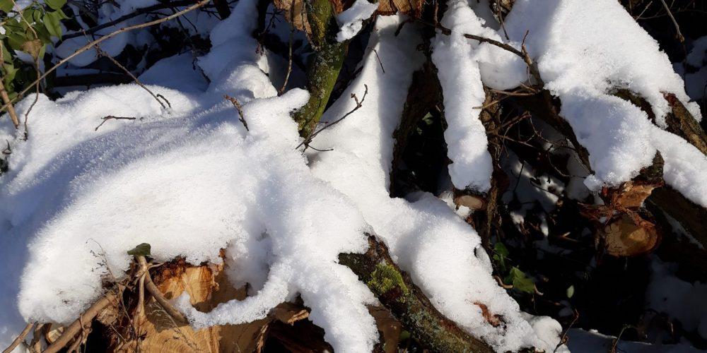 4 Tage Winterliche Adventszeit in Oberwiesenthal